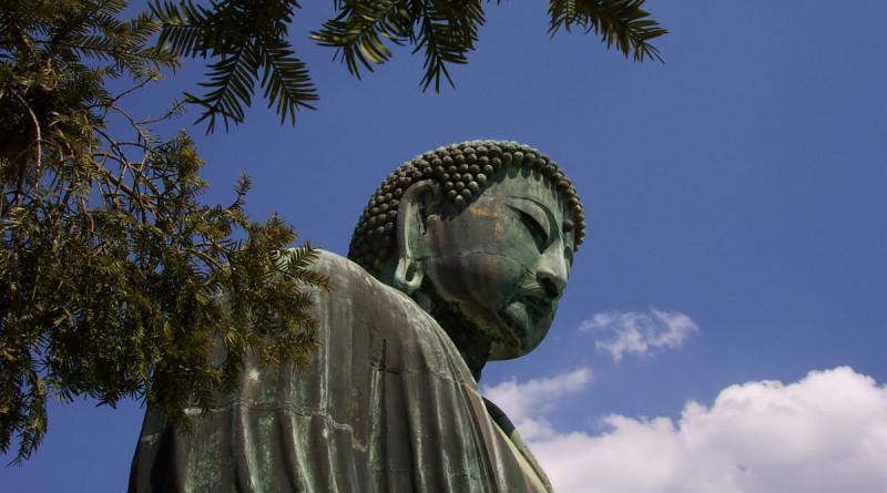 Budda Meditating