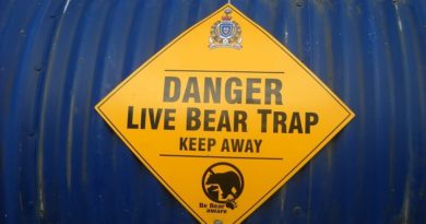 bear trap small