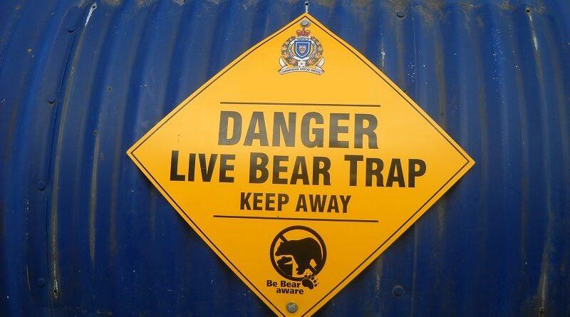 bear trap small