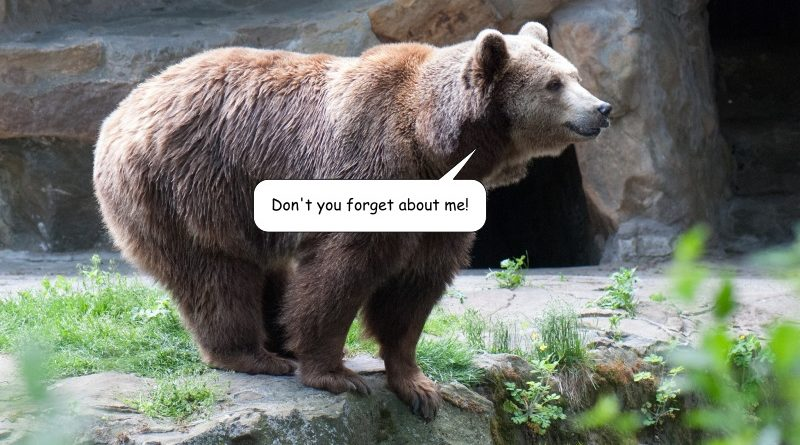 don't forget bear