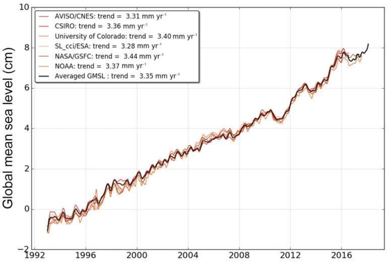 ocean seal levels