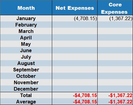 January 2019 net expenses