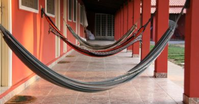 hammocks hanging
