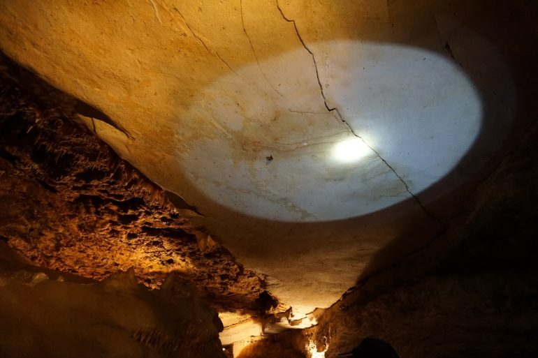 innerspace cavern bat