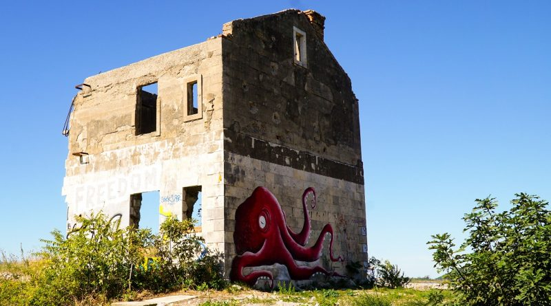 September octopus
